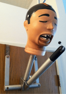 dental mannequin rubber head with mocing jaws from the 1950s